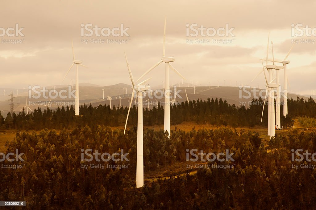 Wind turbines, forest and mountainous landscape at dusk. stock photo