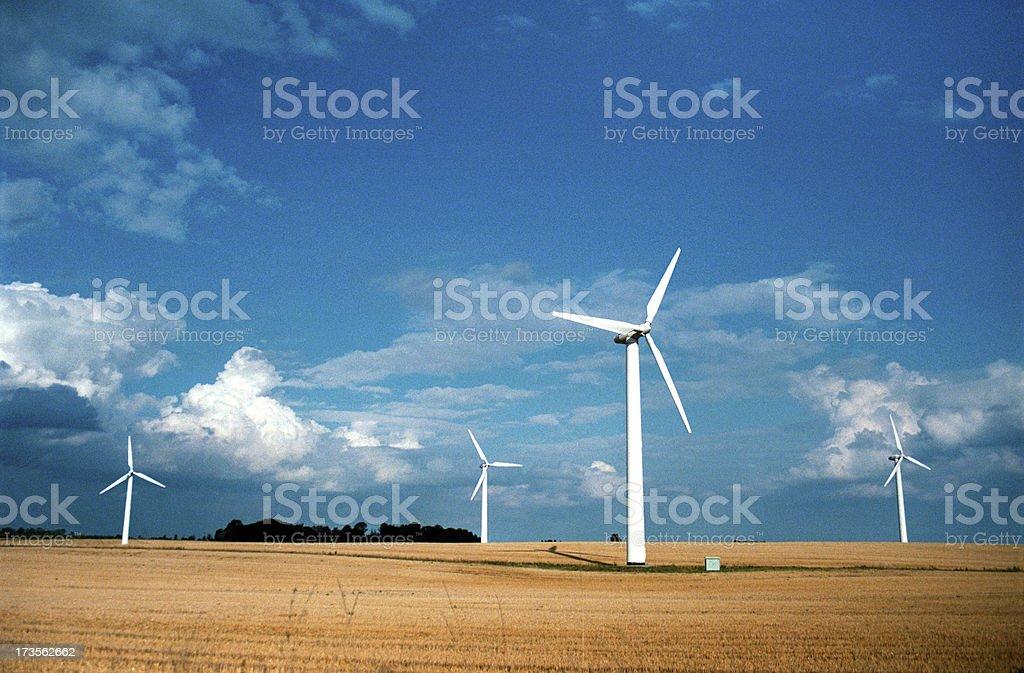 wind turbines in a grain field stock photo