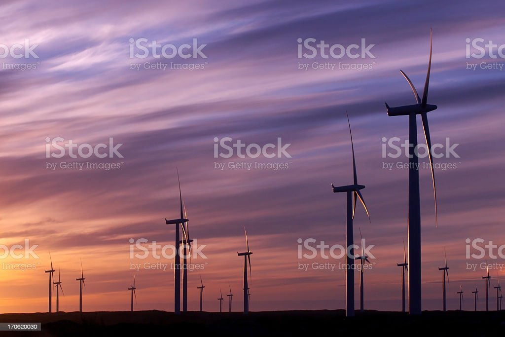 Wind turbines in a wind farm harvesting clean energy  royalty-free stock photo