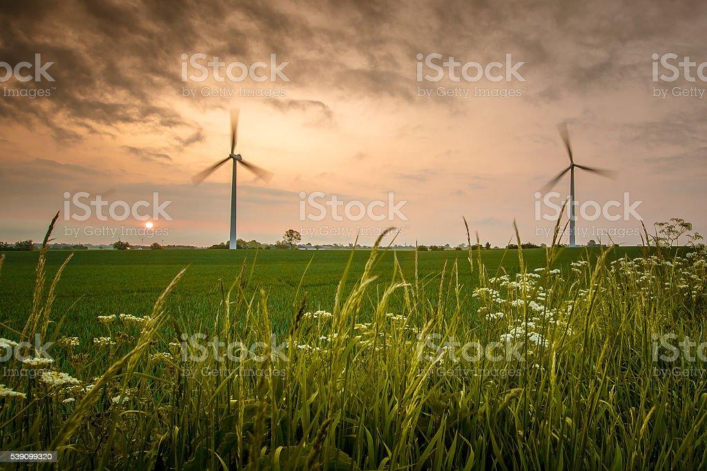 Wind turbines in beautiful summer landscape stock photo