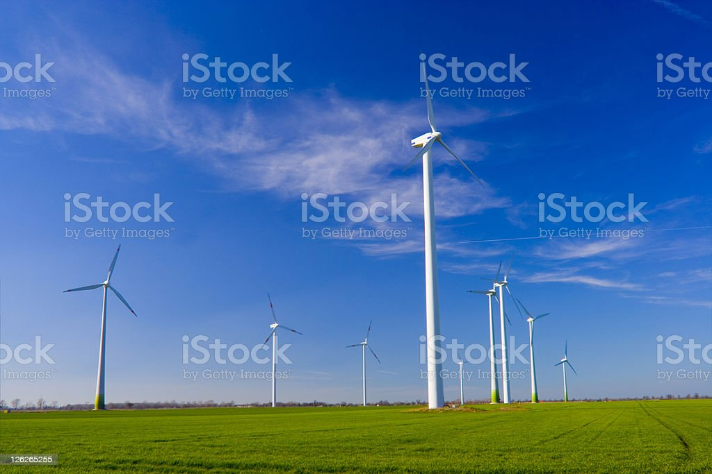 Wind Turbines in Field with Blue Sky royalty-free stock photo