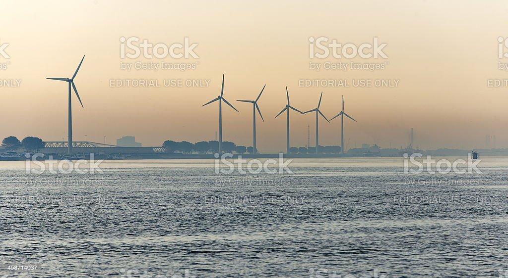 wind turbines in harbour at sunrise stock photo