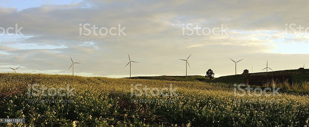 Wind turbines in the countryside royalty-free stock photo