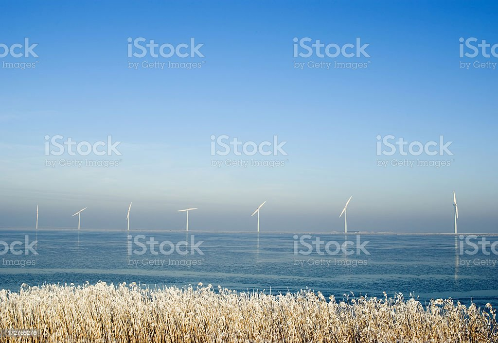 Wind Turbines in Winter Landscape (the Netherlands) royalty-free stock photo