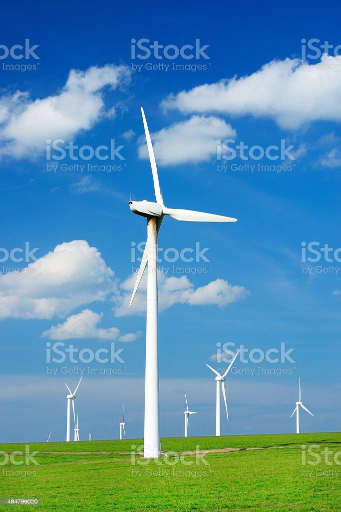 Wind turbines on the grassland stock photo