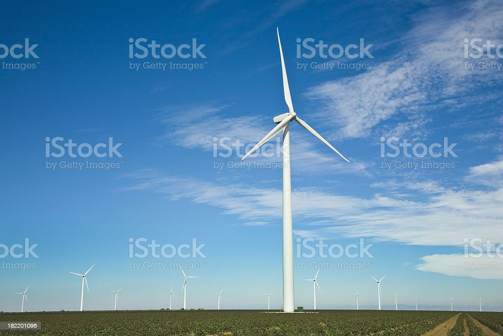 wind turbines over cotton fields in West Texas royalty-free stock photo