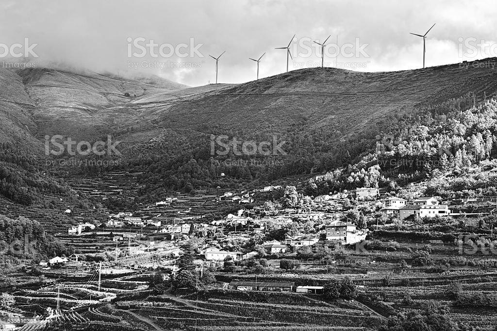 Wind Turbines over Vineyards stock photo
