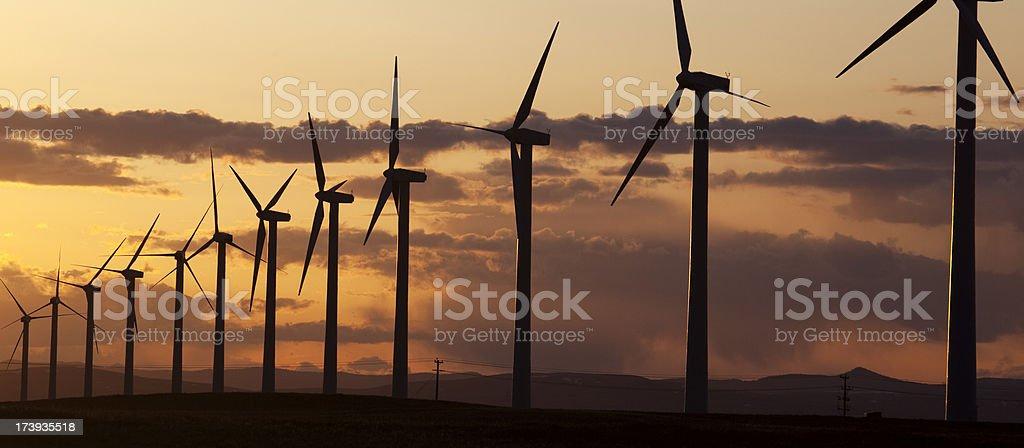 Wind Turbines Panorama royalty-free stock photo