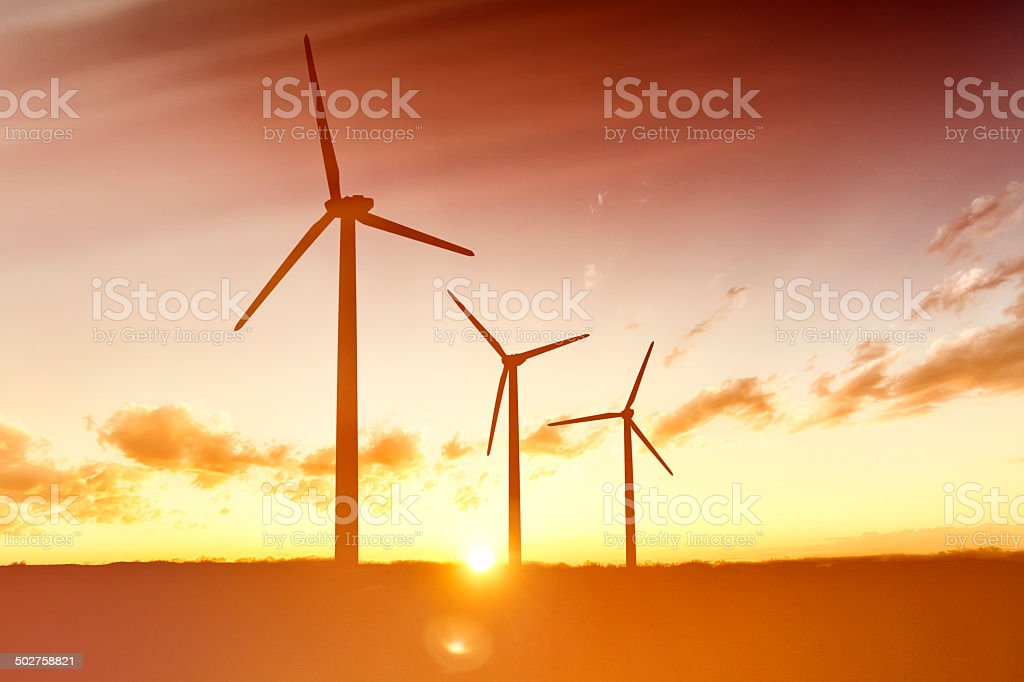 Wind Turbines Washed in Golden Foggy Sunlight stock photo