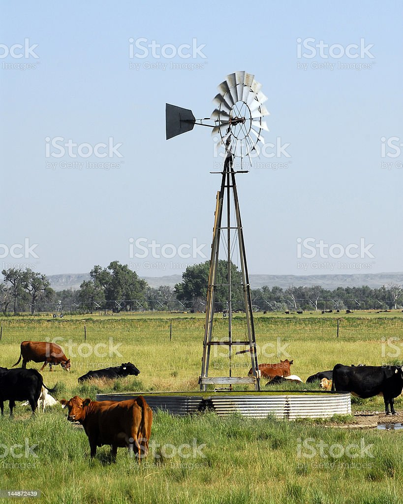 Wind-driven Pump royalty-free stock photo