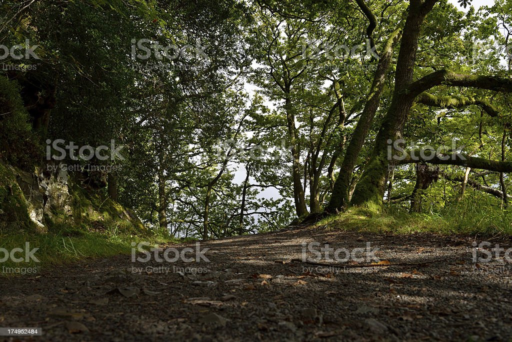 Windermere footpath. royalty-free stock photo