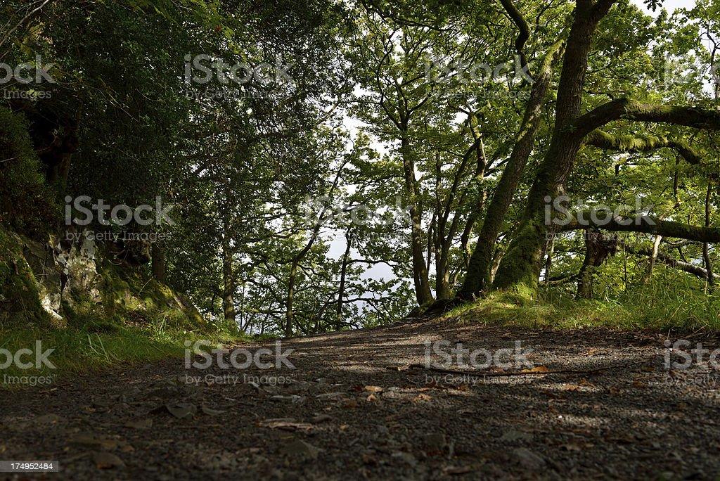 Windermere footpath. stock photo