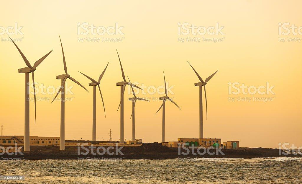 Windfarm view next to the seaside in Fuerteventura stock photo