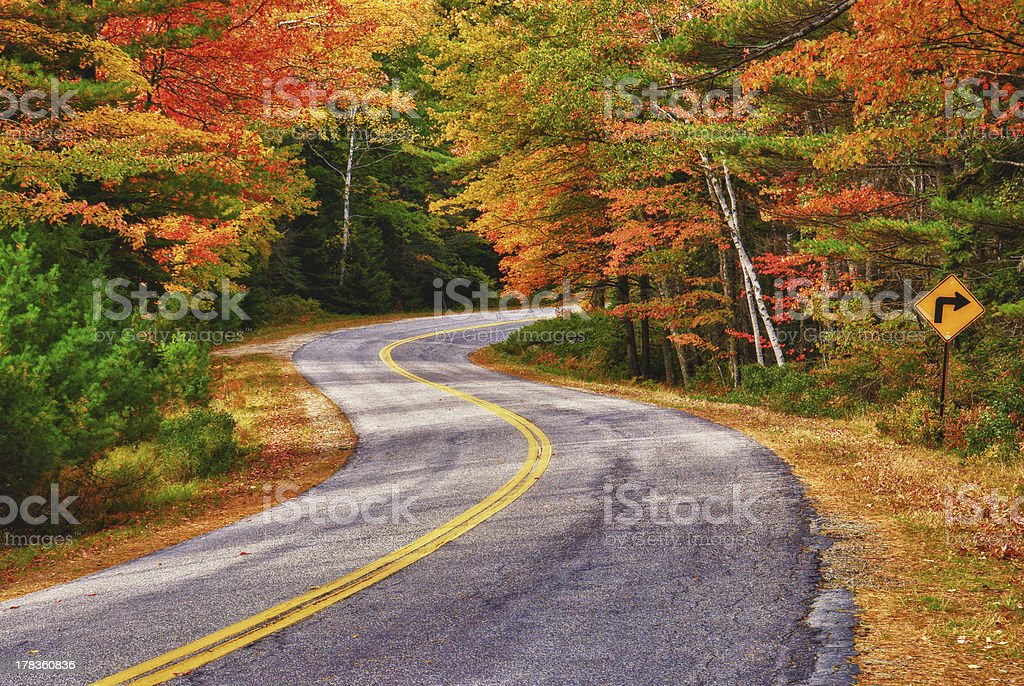 Winding autumn road royalty-free stock photo