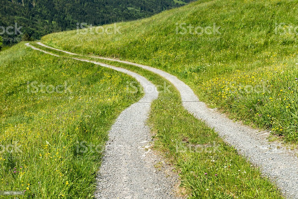 winding country road at grassy hill stock photo