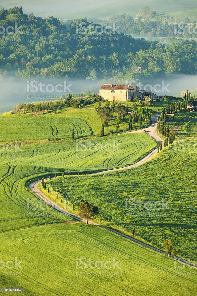 Winding Country Road in Rolling Landscape, Tuscany, Italy stock photo