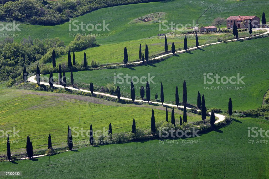 winding country road in Tuscany royalty-free stock photo