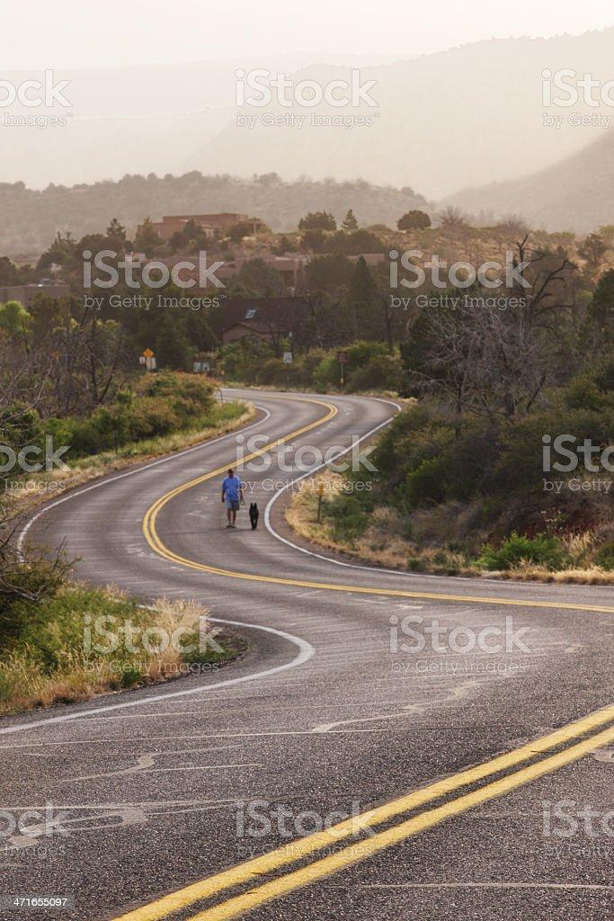 Winding Country Road Walking Dog royalty-free stock photo