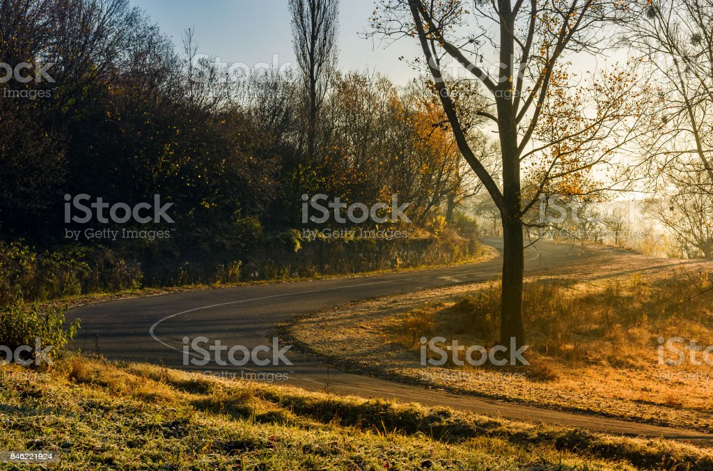 winding countryside road in late autumn fog stock photo