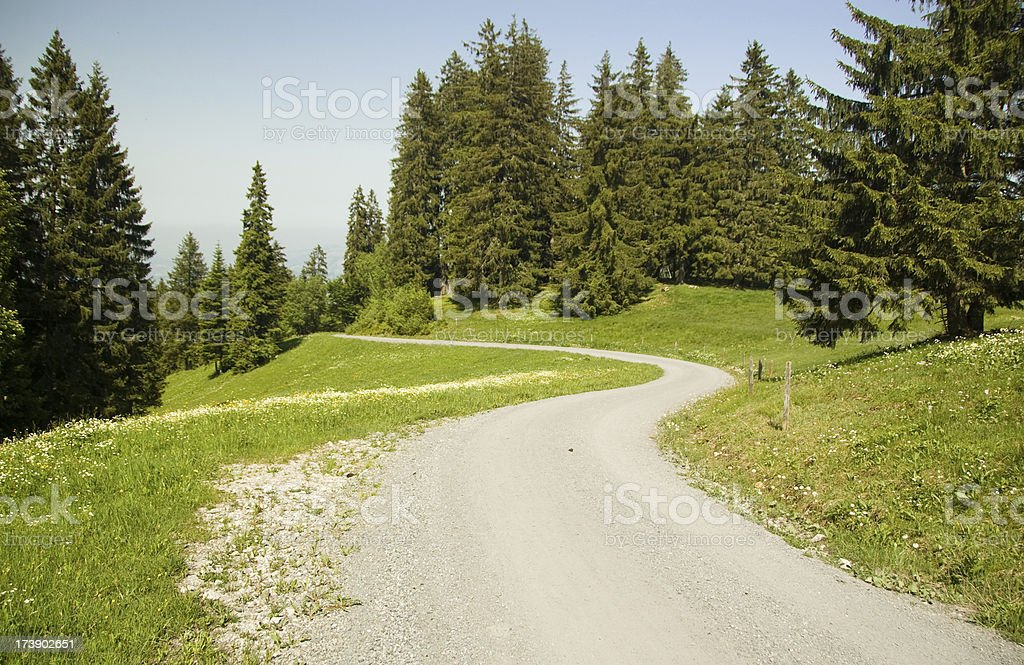 Winding dirt road royalty-free stock photo