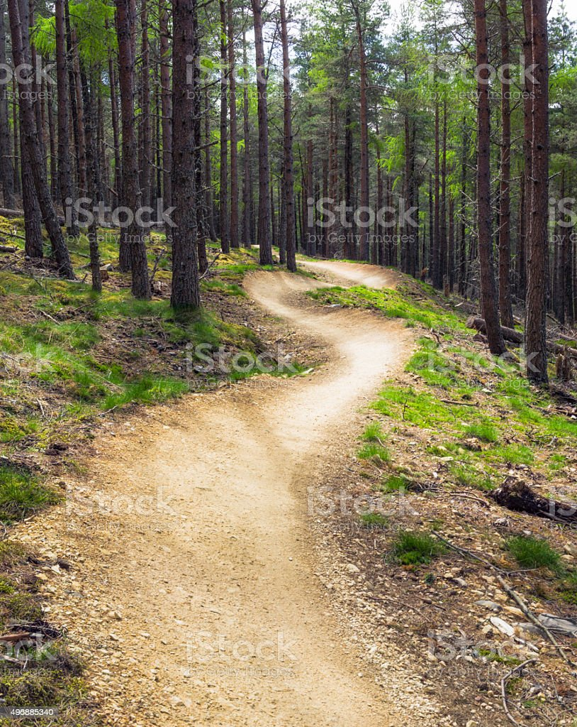 Winding empty mountain bike track curving through forest stock photo