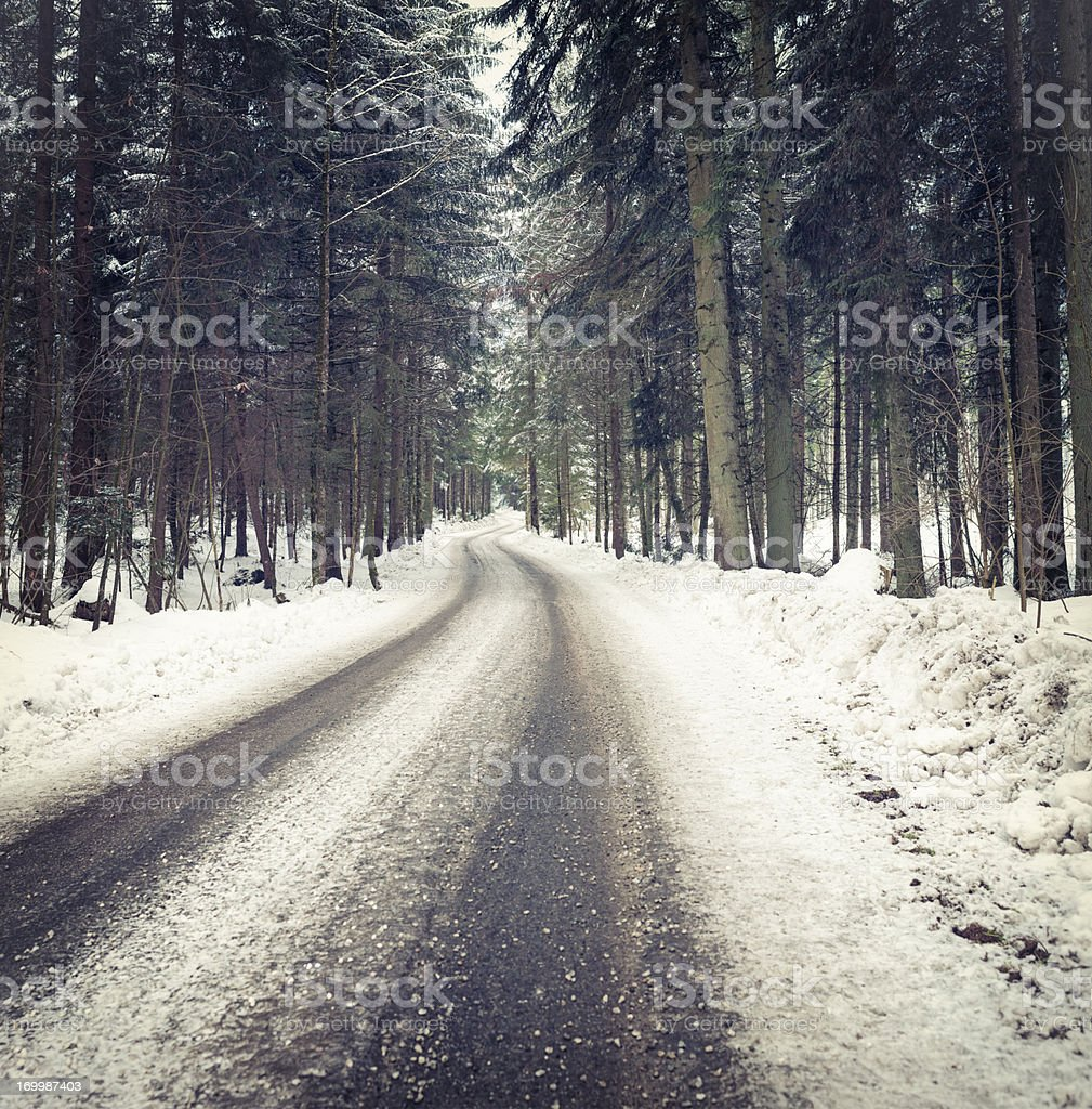Winding Forest Road in Winter royalty-free stock photo