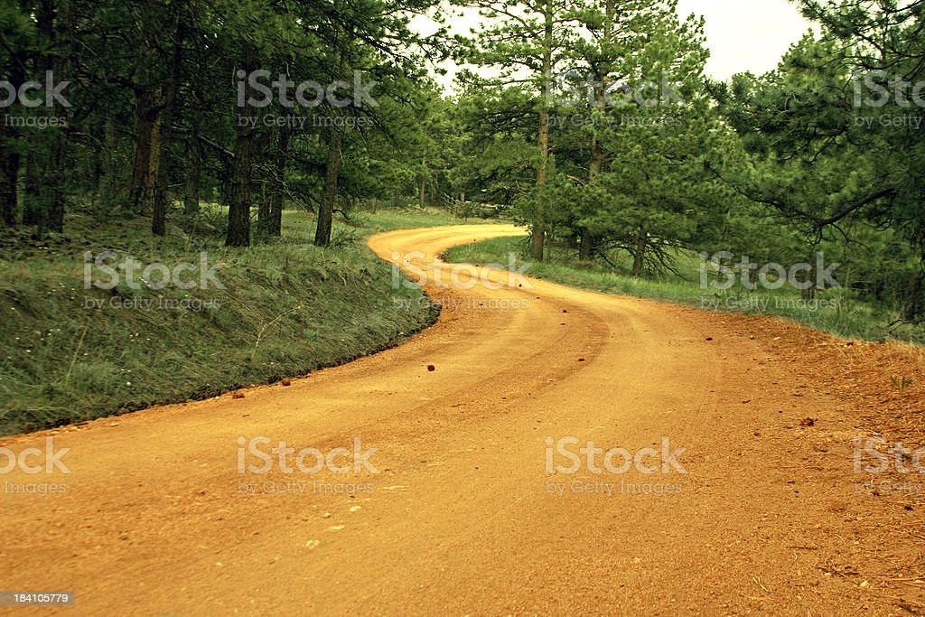Winding Golden Dirt Path in Green Nature royalty-free stock photo