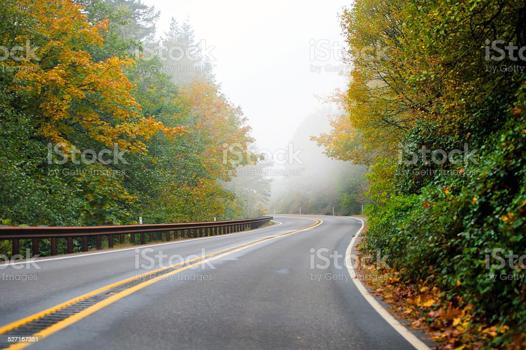 Winding highway autumn road disappearing into the fog stock photo