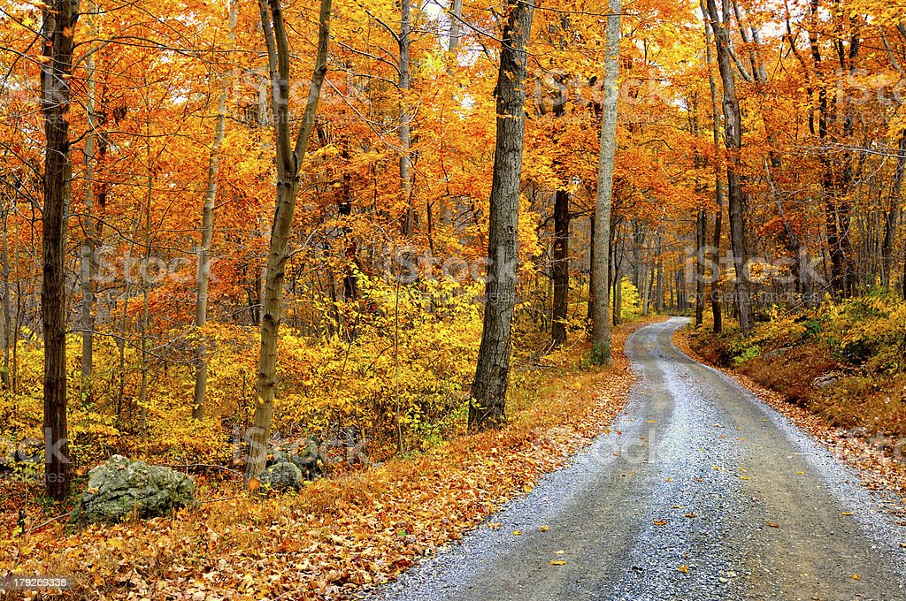 Winding Mountain Road in Autumn stock photo
