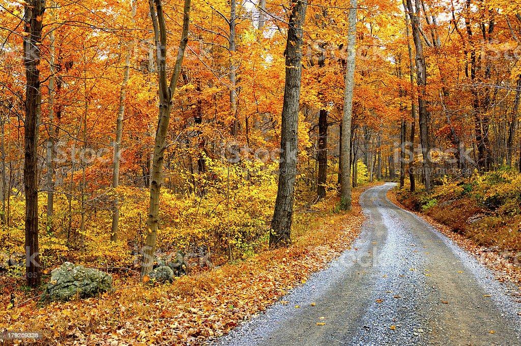 Winding Mountain Road in Autumn stock photo