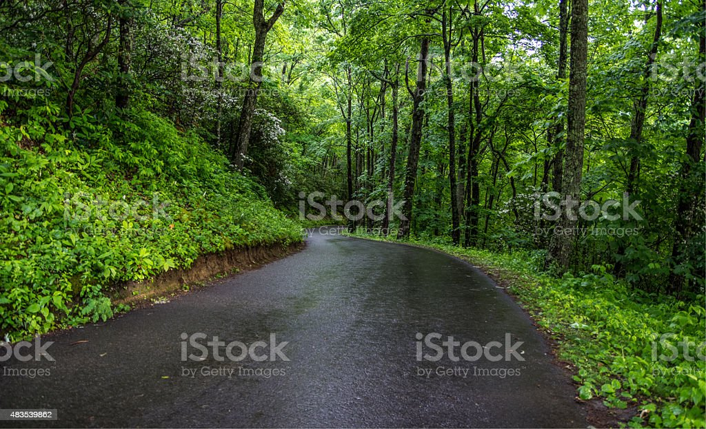 Winding Mountain Road In The Smoky Mountains stock photo