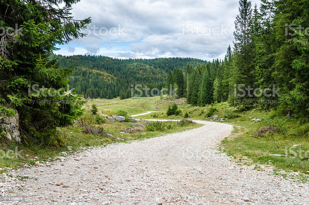 Winding Mountain Road on a Cloudy Day stock photo