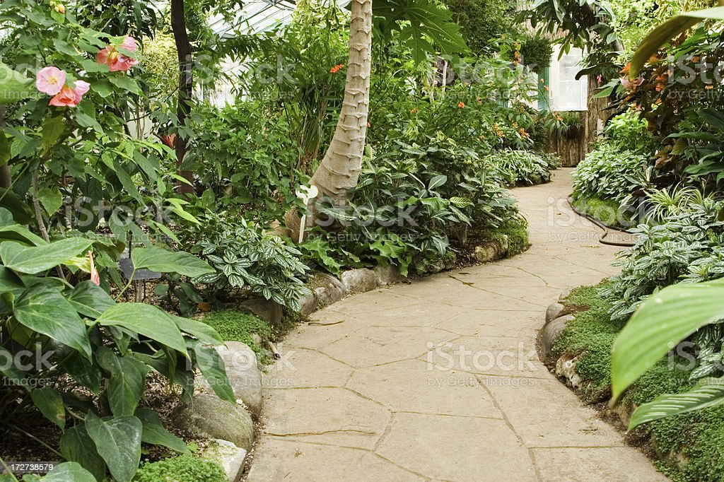 Winding path in conservatory stock photo