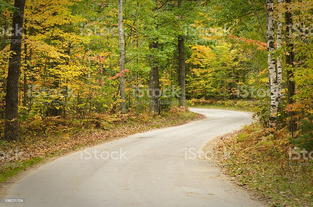 Winding Paved Road Through Autumn Forest royalty-free stock photo