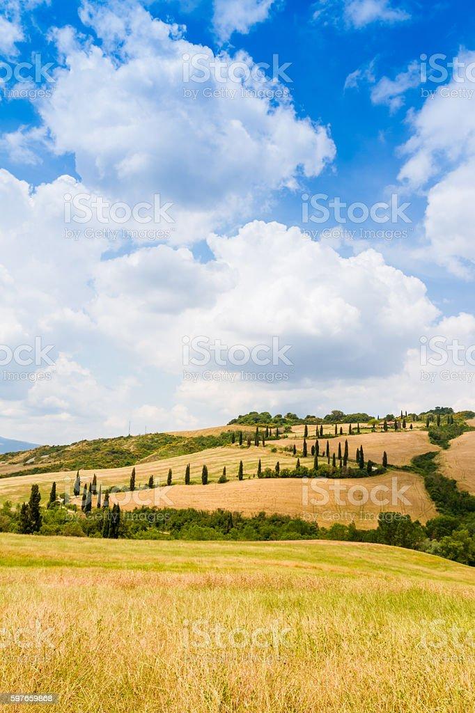 winding road flanked with cypresses in crete senesi Tuscany, Ita stock photo