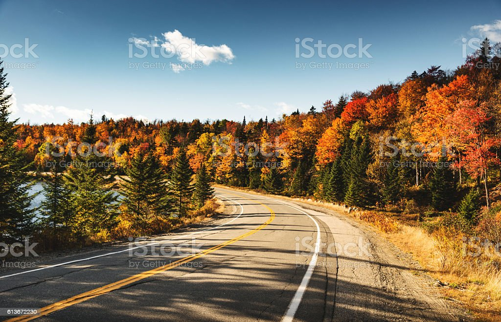 winding road in Maine stock photo