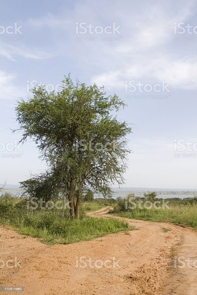 Winding Road in Murchison Falls NP, Uganda royalty-free stock photo
