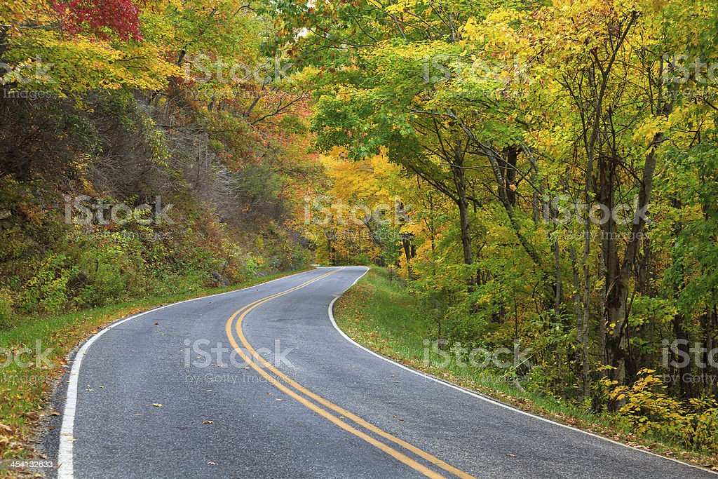 Winding Road in the Fall stock photo