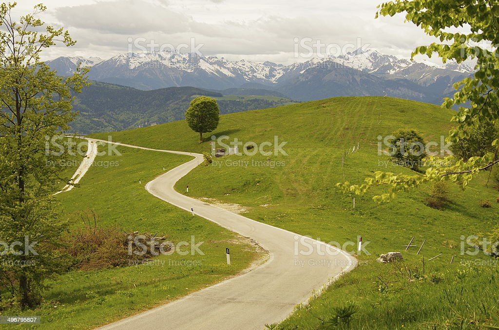 Winding road in the green stock photo
