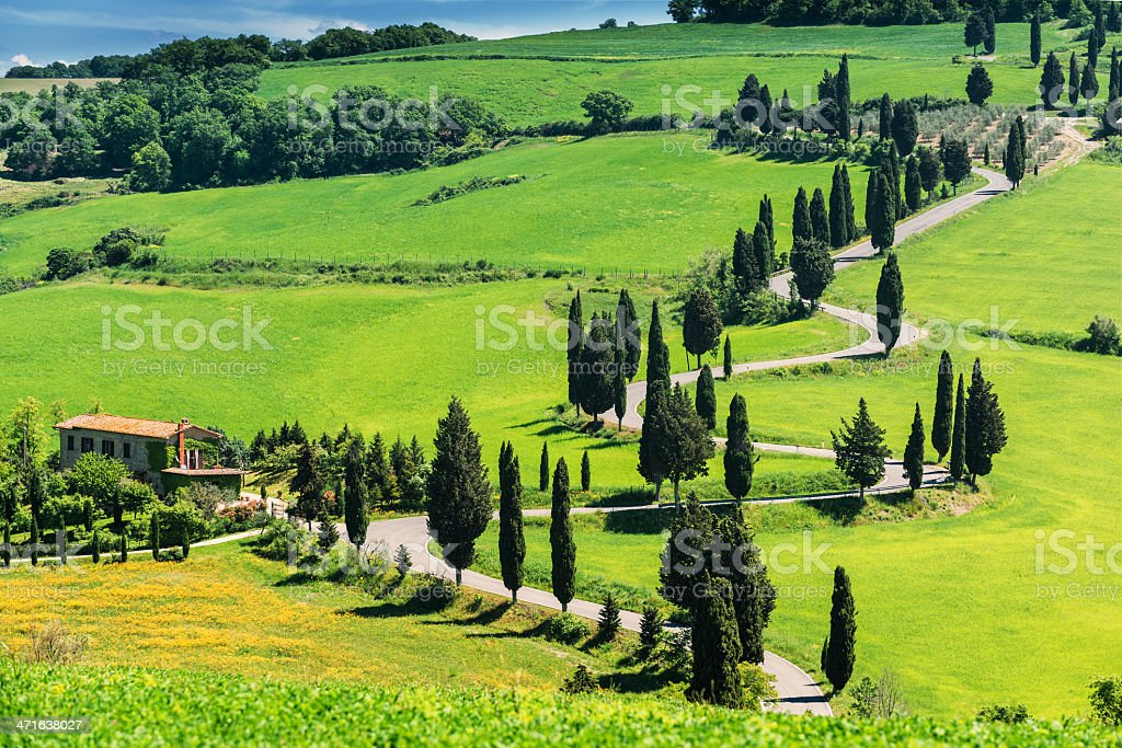 Winding road in Tuscany royalty-free stock photo