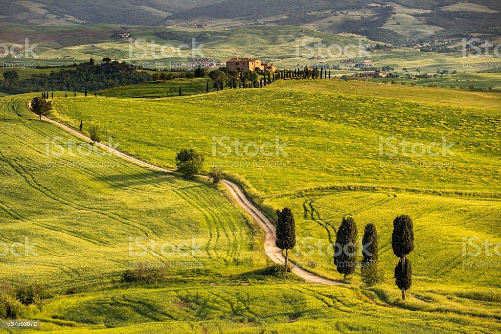 Winding road in Tuscany stock photo