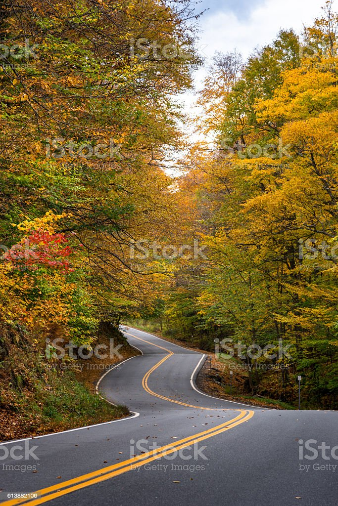 winding road in Vermont stock photo