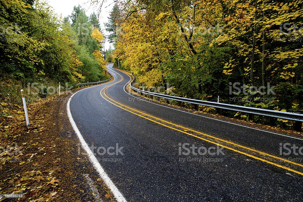 Winding road surrounded by Autumn leaves royalty-free stock photo
