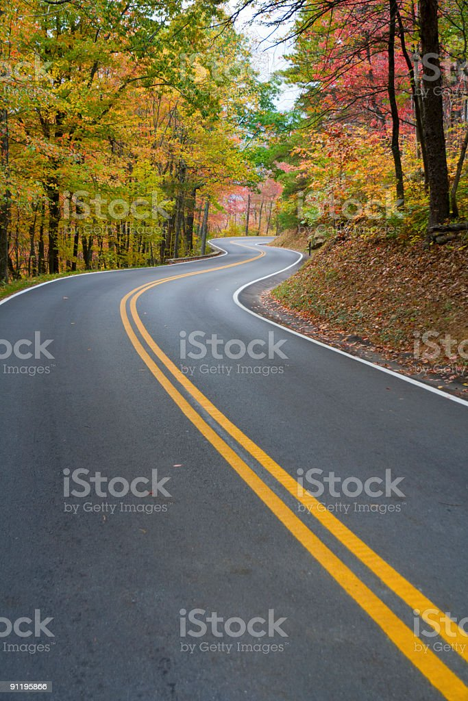 Winding road surrounded by trees in autumn stock photo
