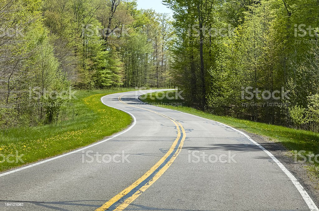 Winding Road Through a Forest in the Spring royalty-free stock photo