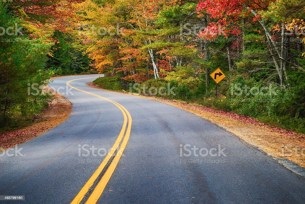 Winding road through autumn trees in New England stock photo