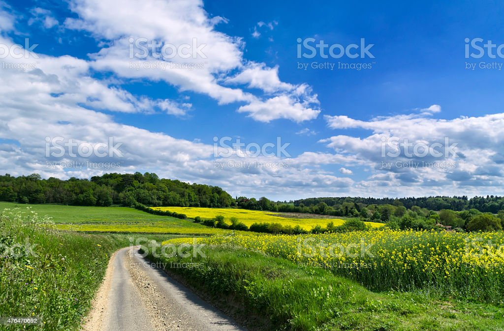 Winding road through fields at Coddenham, Suffolk stock photo