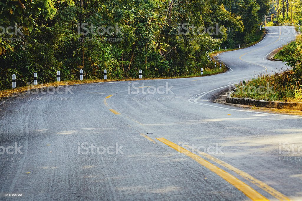 Winding Road Through Forest royalty-free stock photo