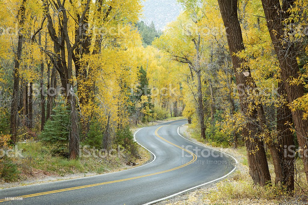 Winding Road Through Mountains of Colorado royalty-free stock photo
