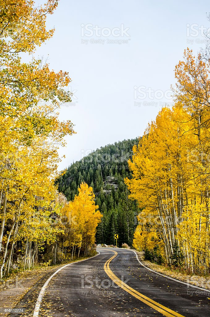 Winding Road Through the Rocky Mountains stock photo